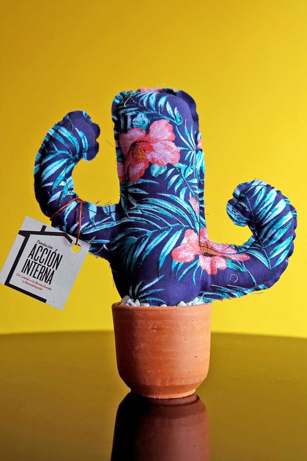 Cactus diseños variados